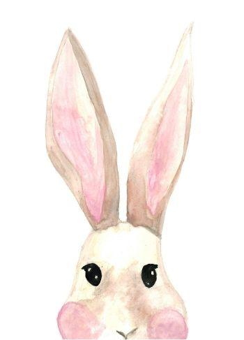 fritsy kaart konijn
