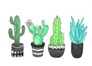 kaart cactus zwarte pot blauw groen hip