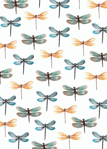 kaart libelles print