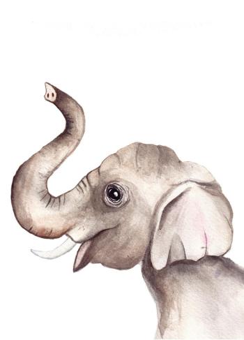 olifant kaart babykamer fritsy