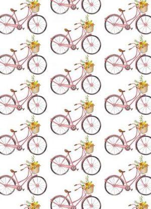 fietsen kaart