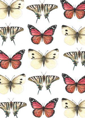 kaart vlinders vintage geschilderd fritsy