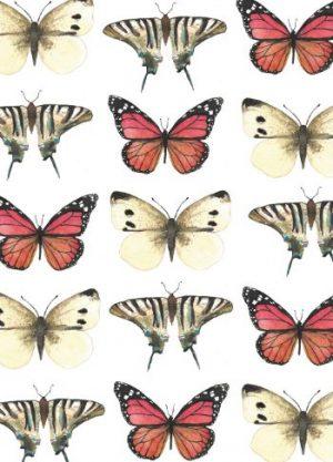 vlinders fritsy kaart vintage